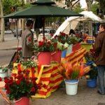 Когда испанцы едят драконов?